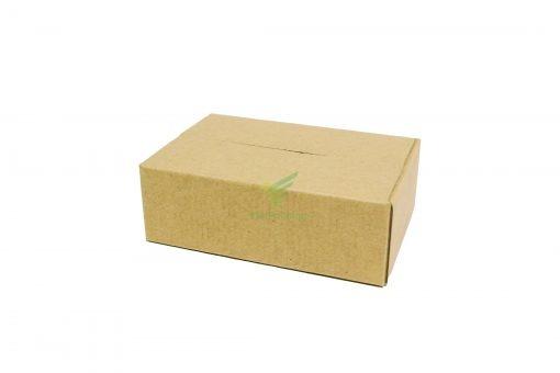 hop carton don hang 15 10 5 03 Hộp carton 15x10x5cm