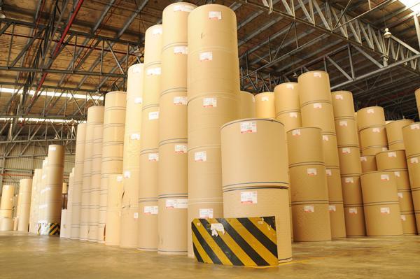 co so cung cap giay kraft cuon gia tot tai tphcm 1 Cơ sở cung cấp giấy kraft cuộn giá tốt tại TpHCM