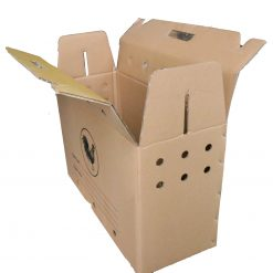 IMG 0275 scaled Thùng carton đựng gà 60x24x38cm