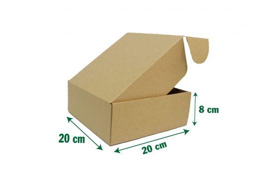 20x20x8 12 scaled Hộp carton 20x20x8cm