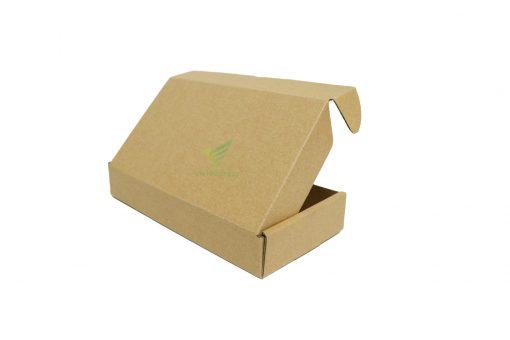 21x11x4 2 Hộp carton 21x11x4cm
