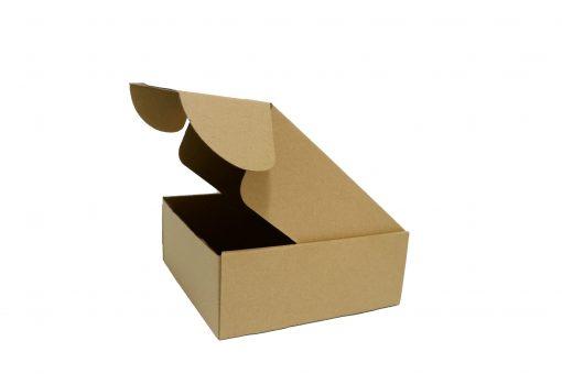 IMG 0502 copy scaled Hộp carton 20x20x8cm