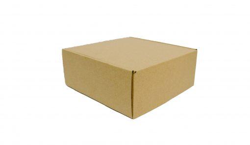 IMG 0504 copy scaled Hộp carton 20x20x8cm