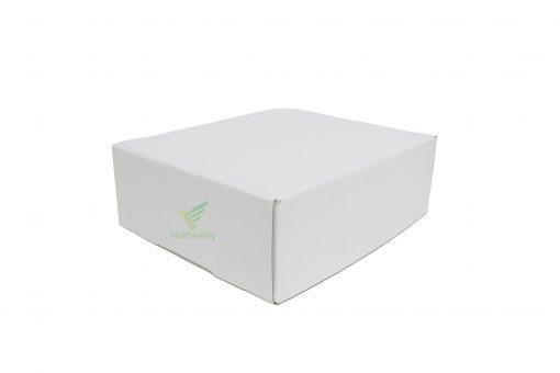 IMG 0737 copy scaled Hộp carton 30x25x10cm