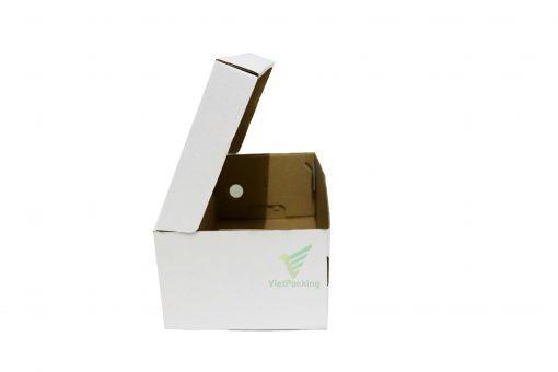 IMG 0801 copy scaled Hộp carton 30x15x10cm