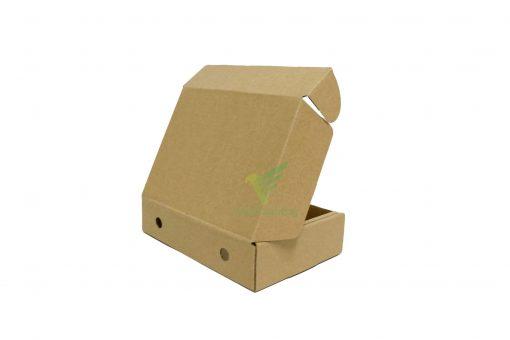 IMG 0813copy 1 scaled Hộp carton 17x12x4cm