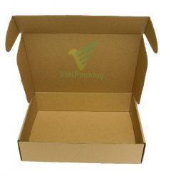 hop carton nap gai 30 21 7 08 Hộp carton 30x21x7cm