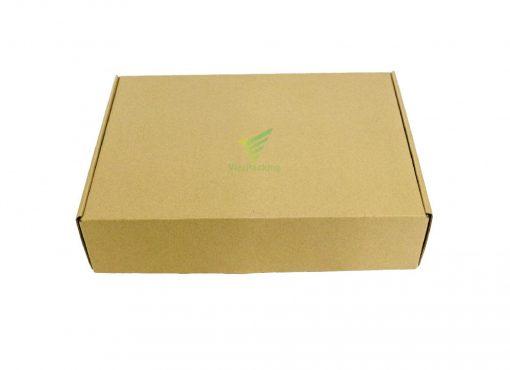 hop carton nap gai 30 21 7 09 Hộp carton 30x21x7cm
