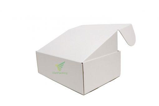 hop carton nap gai 30x20x10 10 scaled Hộp carton nắp gài 30x20x10cm