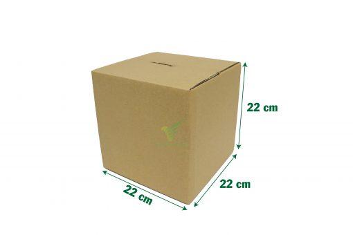 hop carton vuong 22 22 22 10 scaled Hộp carton 22x22x22cm
