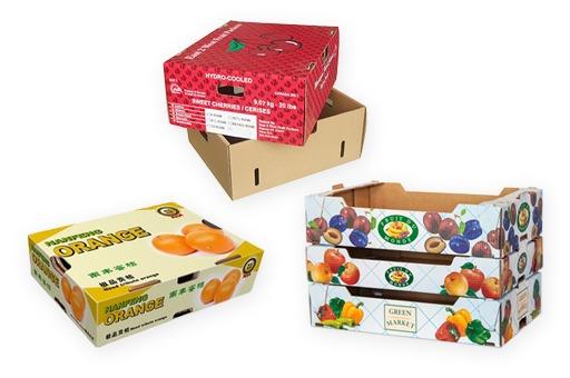 Sản xuất bao bì giấy thùng carton trái cây nông nghiệp xuất khẩu